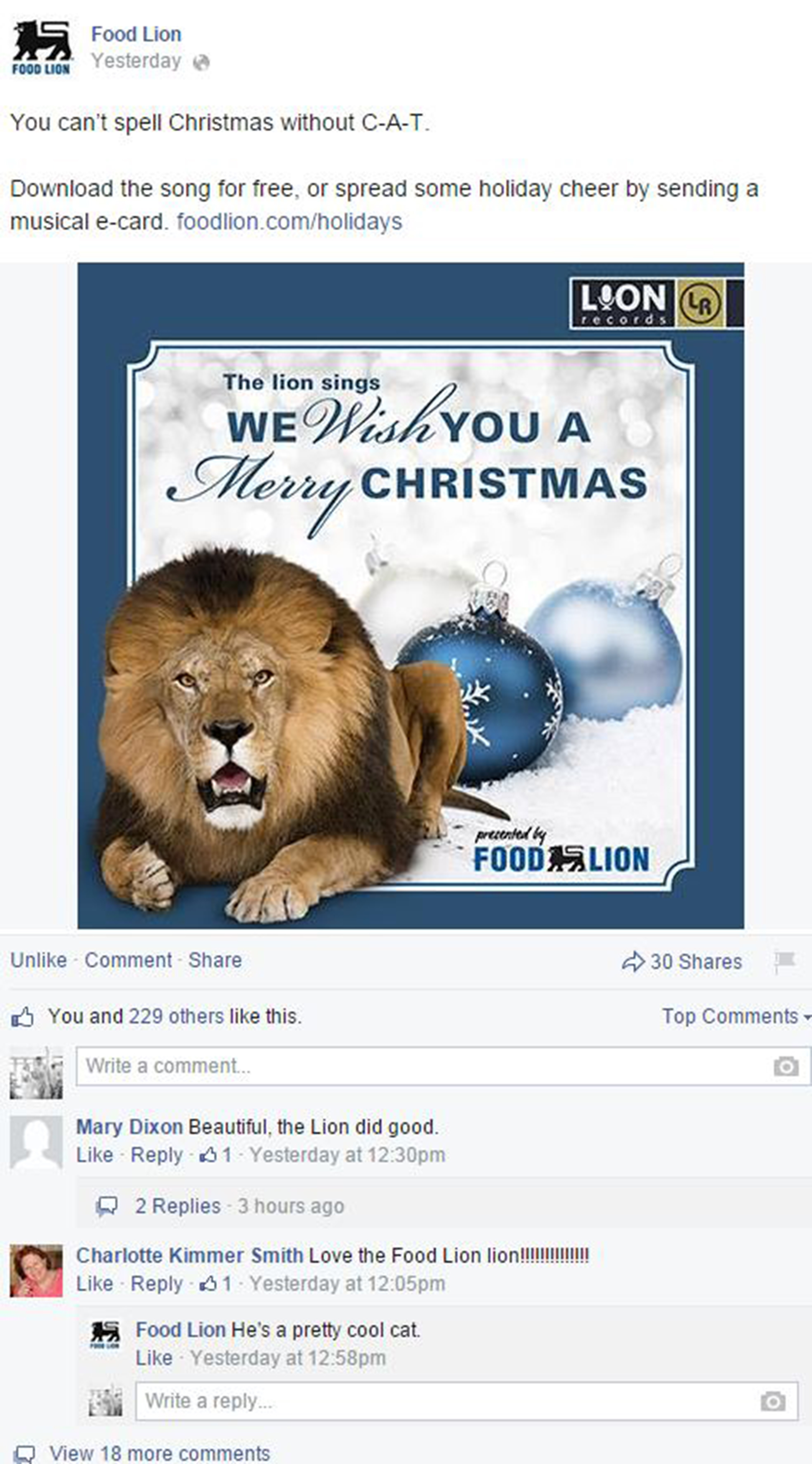 Food Lion Roaring in the Holidays - The Shorty Awards